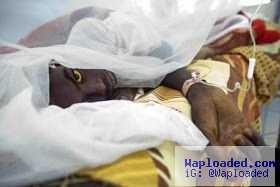 Yellow Fever Outbreak Hits Angola: Kills 37, Infects 191
